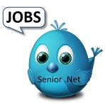 Senior .Net - Javascrip Web Developer